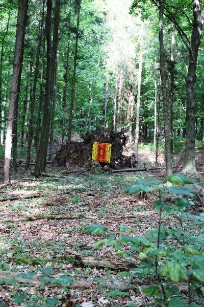 Kunst im Wald 2012